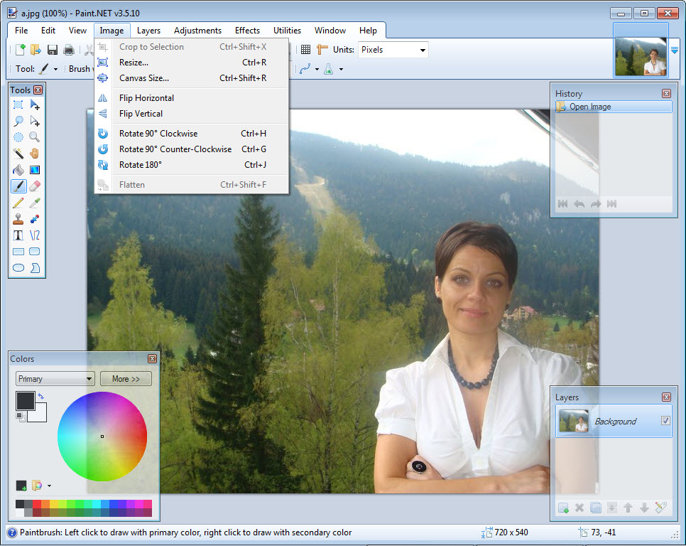 free download paint net for windows 10